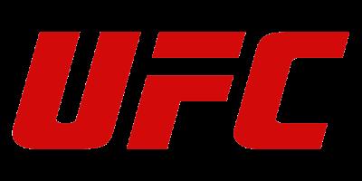 UFC logo_2x1